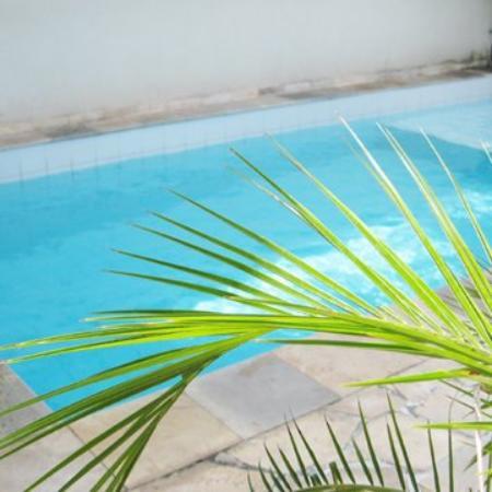 Casa Cool Beans B&B: Crystal Clear Swimming Pool