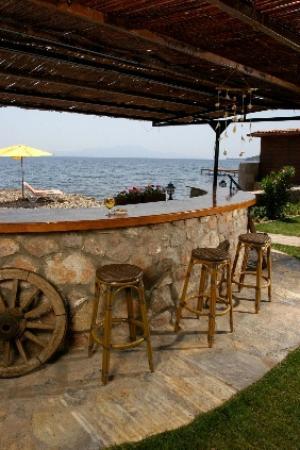 Assos Sardunya Butik Hotel: Bahçe bar