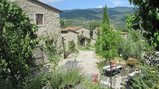 Agriturismo Azienda Agricola il Pozzo: Nice view