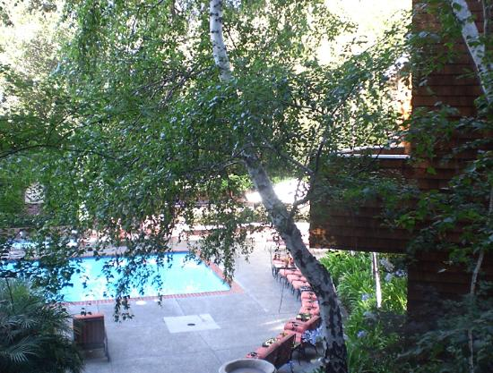 ستانفورد بارك هوتل: View from room of pool area