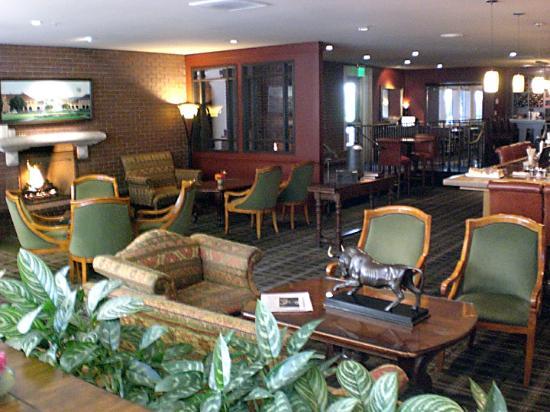 ستانفورد بارك هوتل: Bar area
