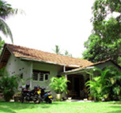 The Home Green Home Bungalow