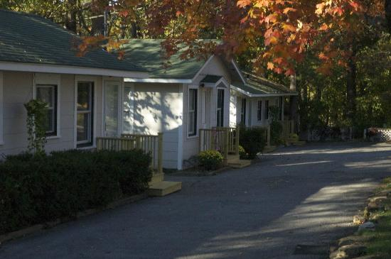 Scandia Inn Bed and Breakfast: Fall view of our cottages