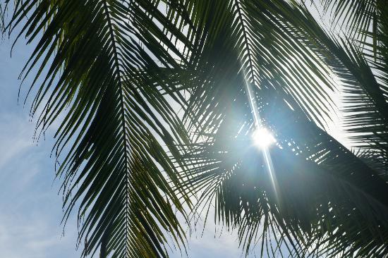 White Beach: light