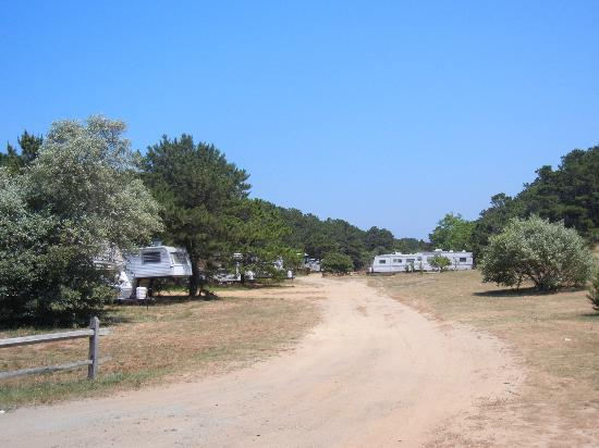 Adventure Bound Camping Resort - Cape Cod: Grounds