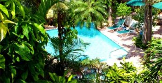 Tropical Inn: Pool