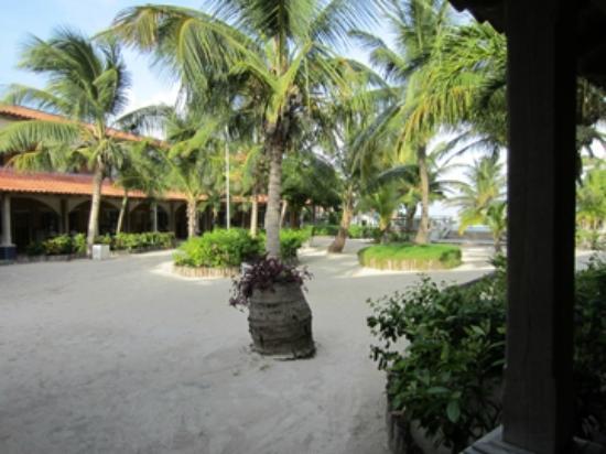 SunBreeze Hotel: Courtyard