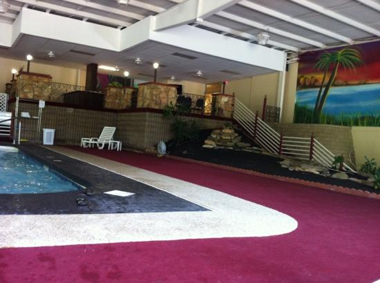 Quality Inn: pool area with wall mural