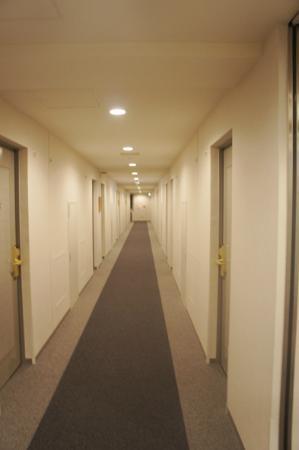 Izumo Green Hotel Morris: 廊下