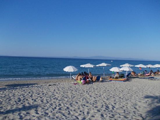 Hotel Elsa: beach