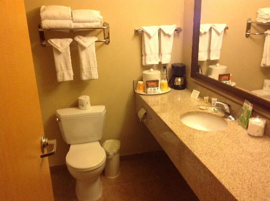 Glenwood Suites: Very nice bathroom!