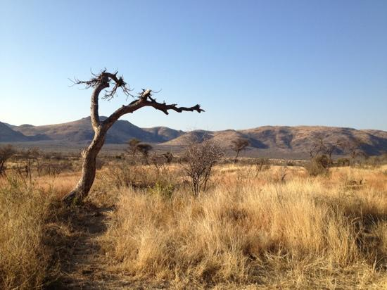 Pilanesberg Private Lodge: Black Rhino Game Reserve