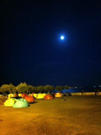 Alma Lusitana : @night