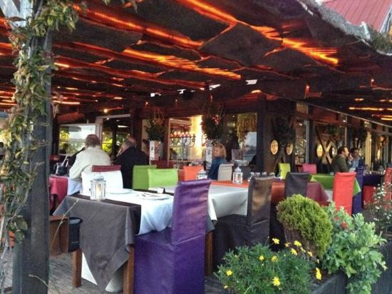 Alma Lusitana : the terrace
