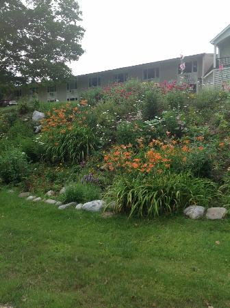Toll Road Inn: Landscaping