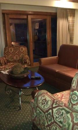 Vail Marriott Mountain Resort: Furniture was very cozy