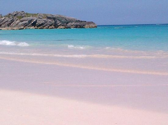 Fairmont Southampton Horseshoe Bay Beach Adjacent To The Hotel Amazing Pink Sand