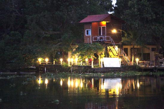 Warmth Lake Haven: Love Dale - Tree house for honeymooners