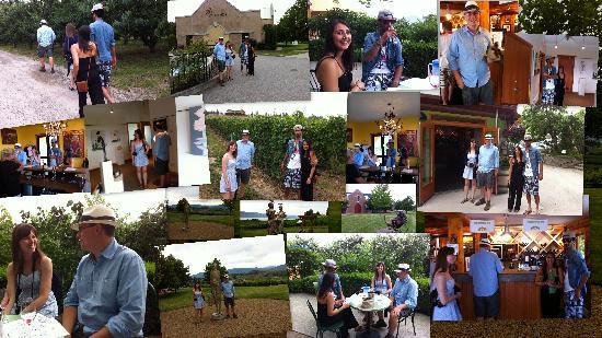 Winelicious Tours: Collage Naramatalicious Tours