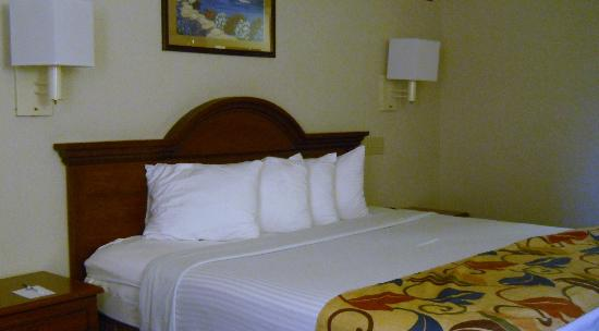 BEST WESTERN Executive Hotel of New Haven-West Haven: Our bedroom