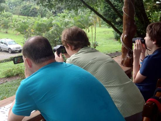 Dave & Dave's Costa RIca Nature Pavilion Park: Family Friendly Bird Watching