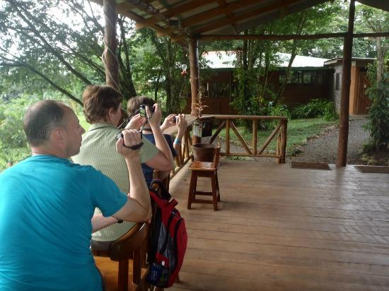 Costa Rica Nature Pavilion: Clean comfortable easy bird watching for families