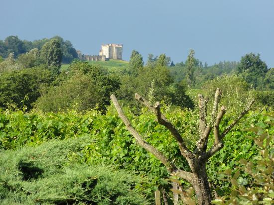 Chateau Nardou: vue sur les vignes et sur le château de Monbadon