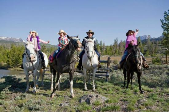Triangle C Ranch: family and horses goofing around