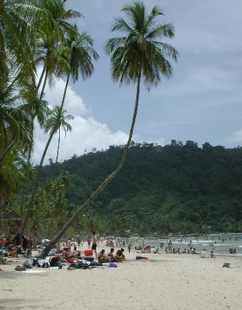 Maracas Bay : There's a fringe of palms that offer some shade in the pm, but get there early to claim those sp