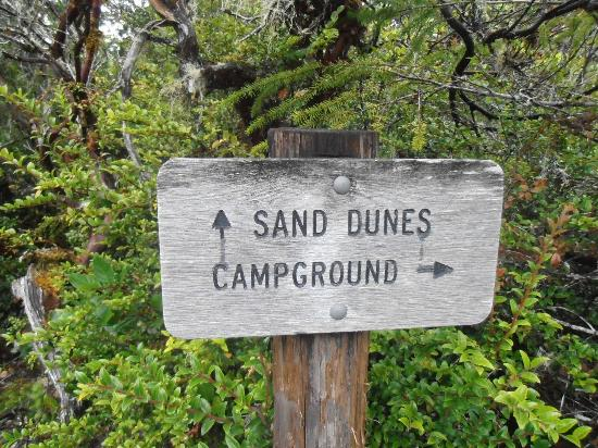 John Dellenback Dunes Trail: Split in the trail leading to the Dunes or to Eel Creek Campground