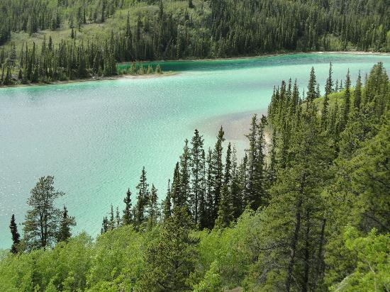 Emerald Lake: Light reflecting silt called marl