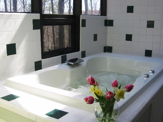Hocking Hills Resort: Each Love Bug cabin provides a large jacuzzi tub in an atrium-like bathroom overlooking the wood