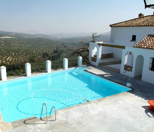 Hacienda Minerva: Piscina de agua salada en un mar de olivos...
