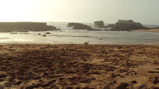 Hotel Issa-Blanca : La plage proche de l'hotel