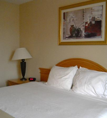 Holiday Inn Express Hartford-Downtown: Our bedroom
