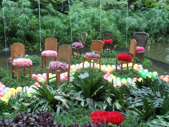 Jardin Botanico de Medellin: 6