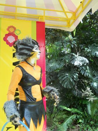 Jardin Botanico de Medellin: 7