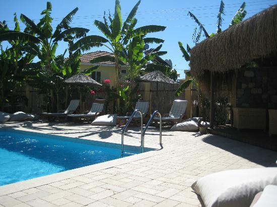 Han Boutique Hotel: Beautiful pool area
