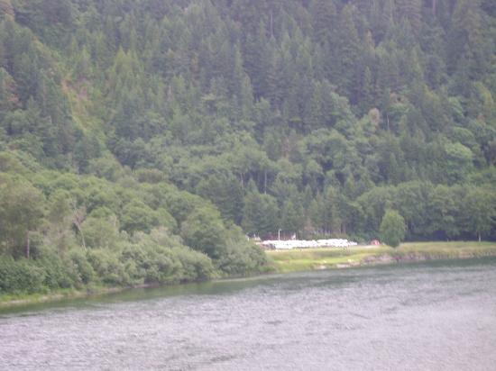 Klamath River RV Park: Photo taken while traveling across Hwy 101 bridge. RV park surrounded by lush greenery!