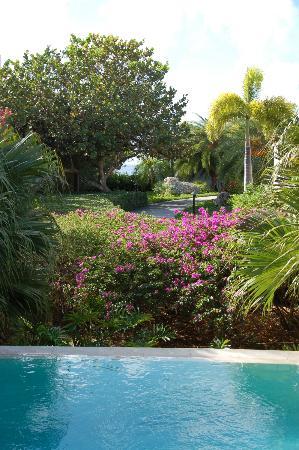 Meads Bay Beach Villas: Walkway