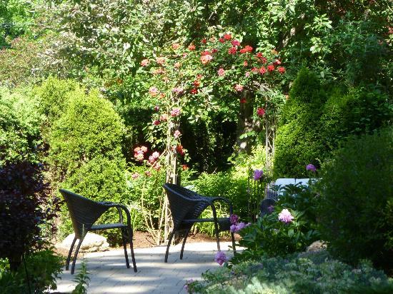 Norfolk Guest House : SIde Garden