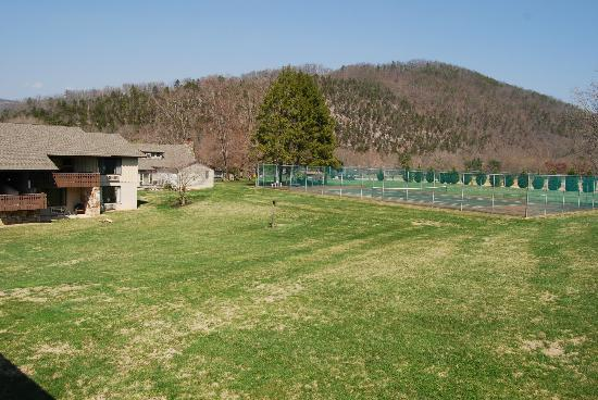 Talley Ho Inn: Tennis Courts