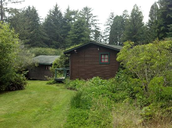 Bishop Pine Lodge: Cottage