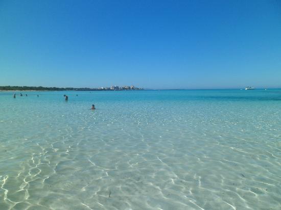 Universal Hotel Marques: Spiaggia di Es Trenc