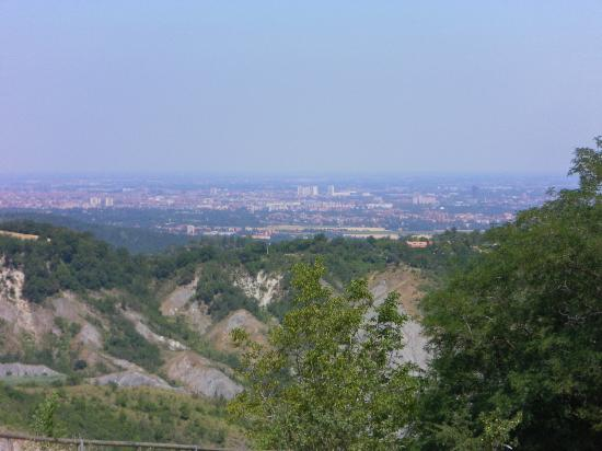 Dulcamara : Panorama