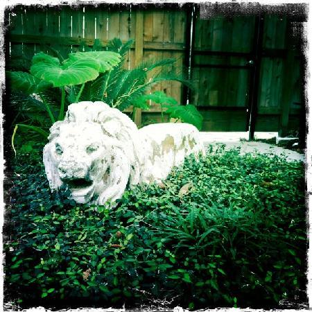 HI-Houston: The Morty Rich Hostel: Leo the lion