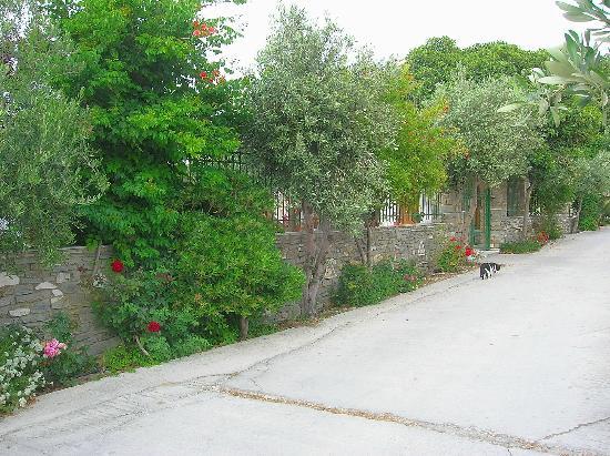 Siroco's Rooms and Studios: La entrada lateral