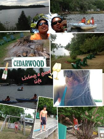 Cedarwood on Lake Muskoka : Thank you to our wonderful guests for putting these together!