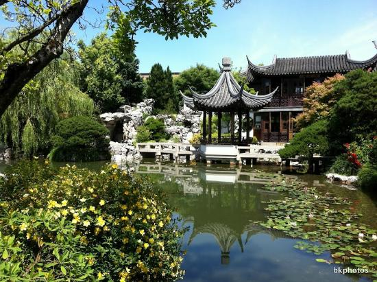 Beautiful Setting Picture Of Lan Su Chinese Garden Portland Tripadvisor