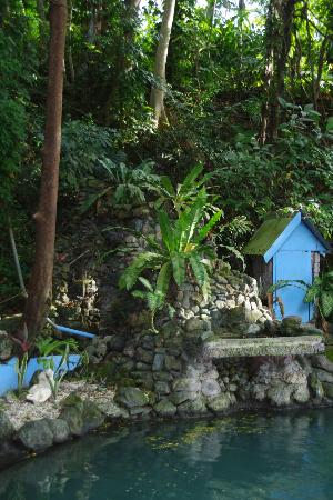 Tuburan, Filippinene: The source of the water from the mountains